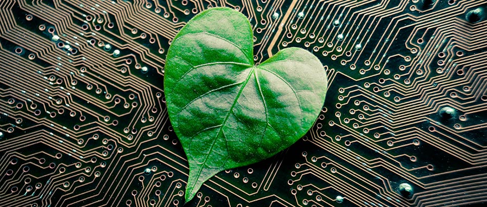 Leisten Sie einen Beitrag zum schonenden Umgang mit Ressourcen. Nutzen Sie Green IT in Ihrem Unternehmen.